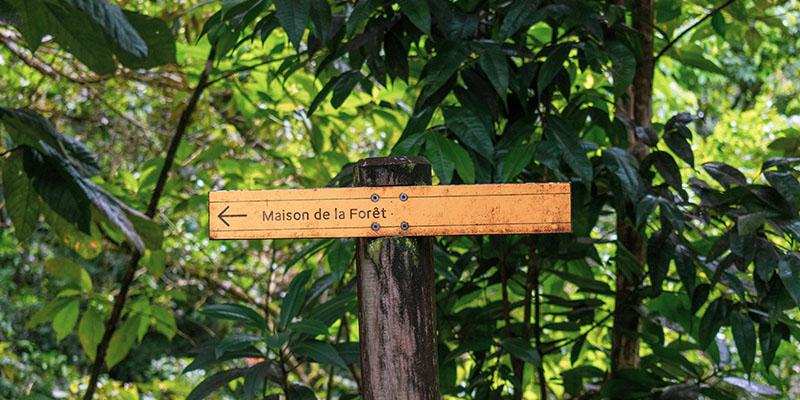Quelles cartes de randonnées préparer pour un séjour en Guadeloupe ?